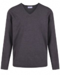 Long Eaton School Grey Jumper